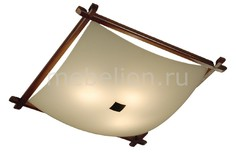Накладной светильник Рамка Венго 931 CL931112 Citilux