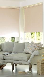 Рулонная штора (50х170 см) 1 шт. ASMIRA 1 Garden