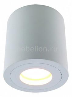 Накладной светильник Galopin 1460/03 PL-1 Divinare