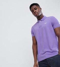 Поло фиолетового цвета с контрастной планкой и логотипом Hollister эксклюзивно для ASOS - Фиолетовый