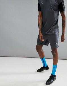 Серые шорты Puma Football NXT 65557304 - Серый