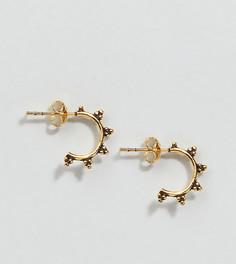 Маленькие позолоченные серьги-кольца Kingsley Ryan - Золотой