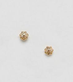 Серьги-гвоздики с гравировкой из позолоченного серебра ASOS DESIGN - Золотой