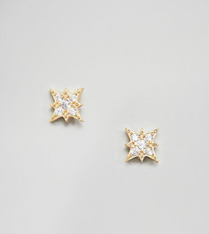 Shashi Sterling Silver 14K Gold Plated Starburst Stud Earrings - Золотой
