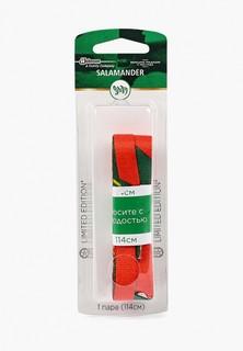 Шнурки Salamander Professional