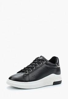 Кеды Max Shoes