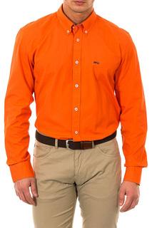 Shirt MCGREGOR