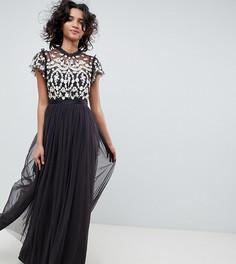 Темно-серое платье макс тюлевое с расшитым верхом Needle & Thread - Мульти