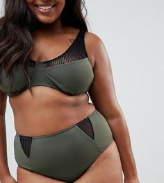 Плавки бикини с завышенной талией и сетчатыми вставками Zizzi - Зеленый