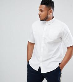 Базовая оксфордская рубашка с короткими рукавами D-Struct PLUS - Белый