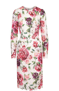 Кружевное платье-миди с круглым вырезом и принтом Dolce & Gabbana