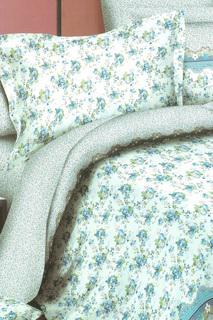 Постельное белье евро 70x70 BegAl