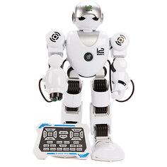 """Радиоуправляемый робот Наша игрушка """"Alpha Robot"""" со светом и звуком"""