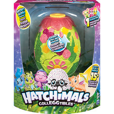 Игровой набор с коллекционными фигурками Hatchimals волшебное превращение Spin Master