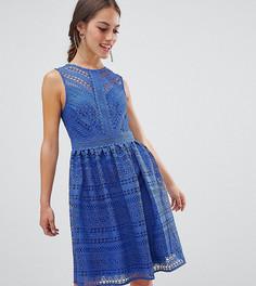 Кружевное приталенное платье миди для выпускного Little Mistress Petite - Синий