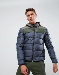 Темно-серая дутая куртка с эко-утеплителем EA7 - Серый