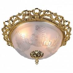 Накладной светильник Piatti A8002PL-2GO Arte Lamp