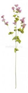 Цветок (76 см) Молюцелла 24002200 Home Religion