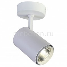 Светильник на штанге Projector 1773-1U Favourite