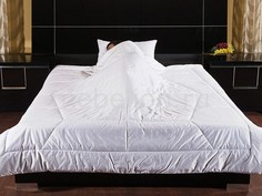 Одеяло евростандарт Feng-shui Primavelle