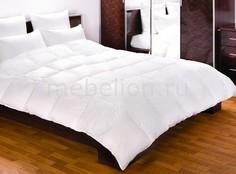 Одеяло евростандарт Felicia Primavelle