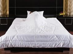 Одеяло полутораспальное Feng-shui Primavelle