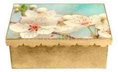Шкатулка декоративная (26х18х13 см) Яблоня 1826-6 Акита