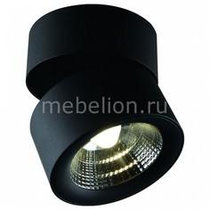 Светильник на штанге Urchin 1295/04 PL-1 Divinare