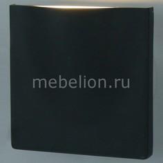 Накладной светильник Tasca A8506AL-1GY Arte Lamp