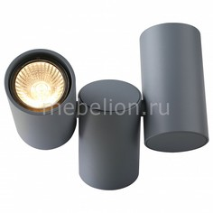 Накладной светильник Gavroche 1354/05 PL-2 Divinare