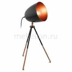 Настольная лампа декоративная Chester 49385 Eglo