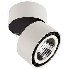 Накладной светильник Forte 214850 Lightstar