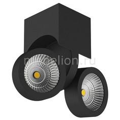 Светильник на штанге Snodo 55374 Lightstar