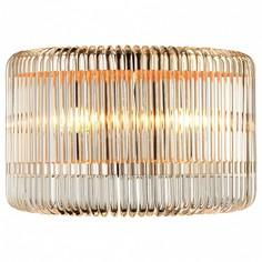 Накладной светильник Negociant 2094-2W Favourite
