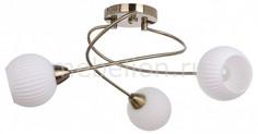 Люстра на штанге Pavia Brass 8270311 Spot Light