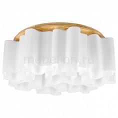 Накладной светильник Nubi Legno 802095 Lightstar