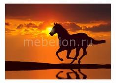 Панно (70х50 см) Лошадь 320362893 Ekoramka
