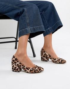 Кожаные туфли на среднем каблуке с леопардовым принтом ASOS DESIGN Sahara - Мульти