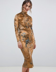 Бархатное платье миди с принтом птиц и длинным рукавом Hope & Ivy - Мульти