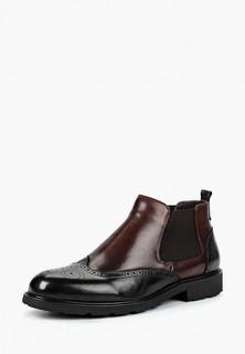 Ботинки Marco Lippi