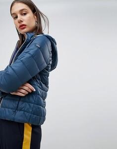 Короткая дутая куртка с капюшоном Esprit - Синий