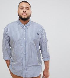 Сине-белая рубашка в полоску с длинными рукавами BadRhino Big - Синий