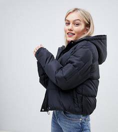 Дутое пальто с капюшоном Brave Soul Petite Karen - Черный