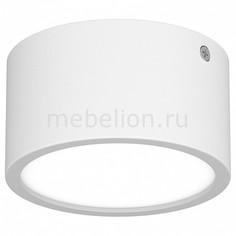 Накладной светильник Zolla Cyl LED-RD 211916 Lightstar