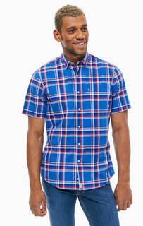 Синяя хлопковая рубашка с короткими рукавами Pierre Cardin