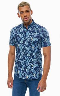 Синяя хлопковая рубашка с растительным принтом Pierre Cardin