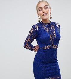 Облегающее кружевное платье мини синего цвета Missguided Petite - Синий