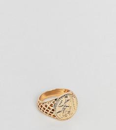 Золотистое кольцо в винтажном стиле ASOS DESIGN Plus - Золотой