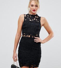 Кружевное платье Parisian Tall - Черный