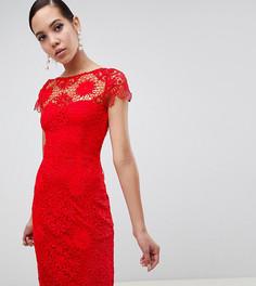 Красное кружевное платье-футляр с короткими рукавами Paper Dolls Tall - Красный